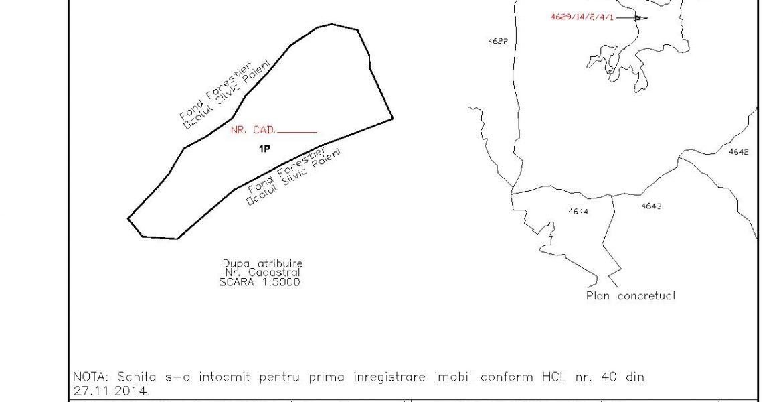 pasune-plisca2-pad-page-001